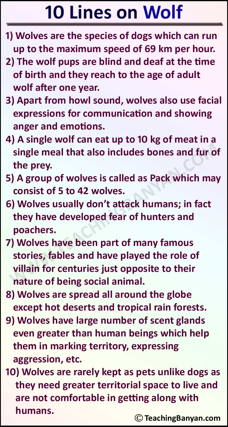 10 Lines on Wolf